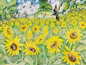 149-Sunflower-field